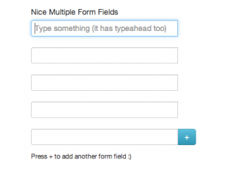 Dynamic Form Fields