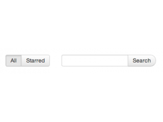 Search form with toggles